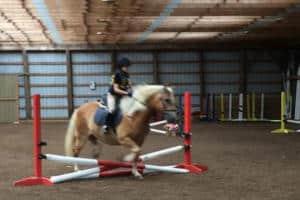 019-jumping tetathrathlon